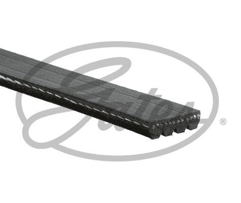 Gates 48342 - Поликлиновые ремни (продолные рёбра) sparts.com.ua